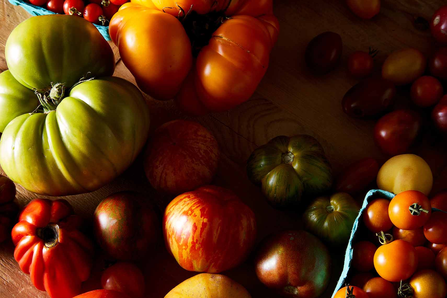 2016-0811_tomato-bounty_james-ransom-393